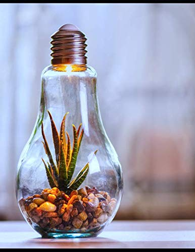 Notebook: Environmental protection nature light bulb bulbs lights lighting fitting room bed home house