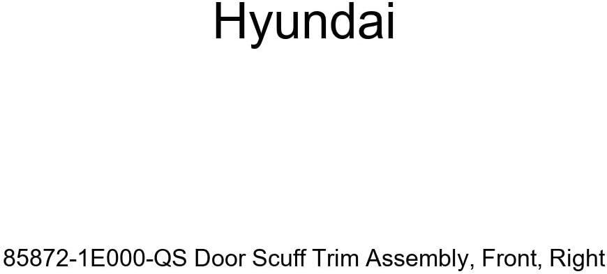 Front Genuine Hyundai 85872-1E000-QS Door Scuff Trim Assembly Right