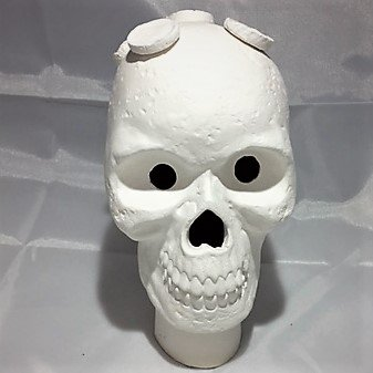 ReefCreators Ceramic Skull Frag Holder w/ 7 Plugs Frag Station (Includes 7 Plugs) by ReefCreators