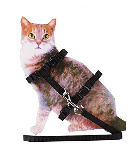 Pet H (Nylon Cat Costume)