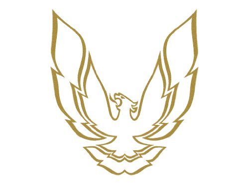 pontiac firebird hood - 9