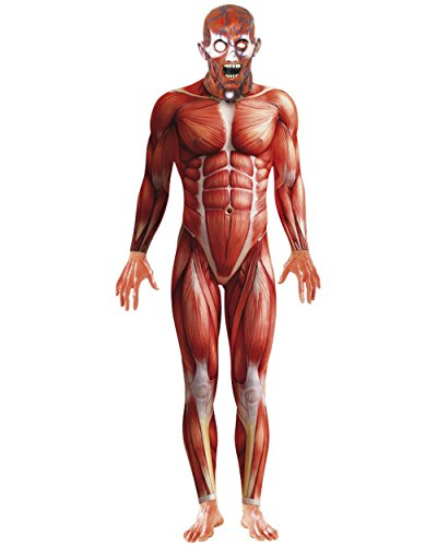 Men's Muscle Anatomy Anatomical Body Structure Bodysuit Costume Large (Adult Muscle Suit)