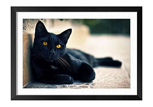 Street Black Cat Black Frame Art Print , Home Wall Decor
