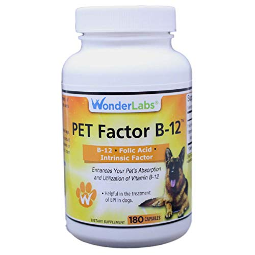 WonderLabs Pet Factor B-12 | Vitamin B-12 in Methylcobalamin Form | Popular in Treatment of EPI in Dogs