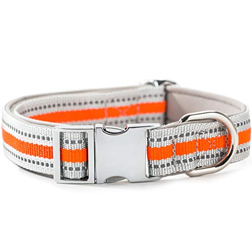 HIPIPET Highly Reflective Dog Collar with Comfortable Soft Lining Padded and Metal Buckle for Medium and Large Dogs(Orange,L) ()