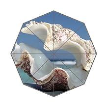 Best Gift Clam Shell On Beach Custom Foldable Umbrella Cool
