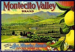 MAGNET Montecito Valley Santa Barbara County Lemon Citrus Fruit Crate Magnet Art Print - Montecito Metal