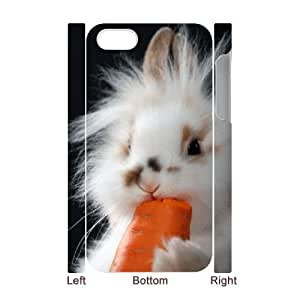 DIY rabbit 3D Phone Case, DIY 3D Case Cover for iphone 4,4s with rabbit (Pattern-4)