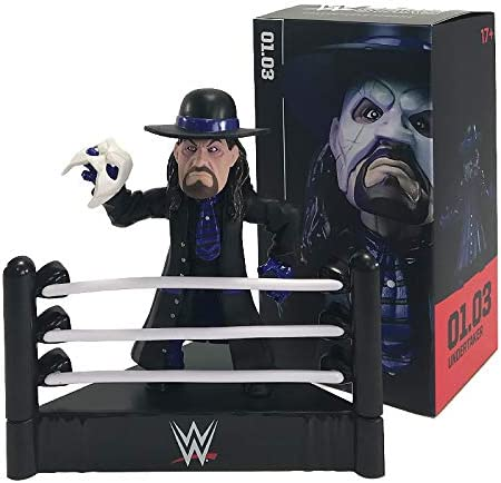 WWE Undertaker Figure 10X18CM LootCrate Exclusive: Amazon.es: Juguetes y  juegos