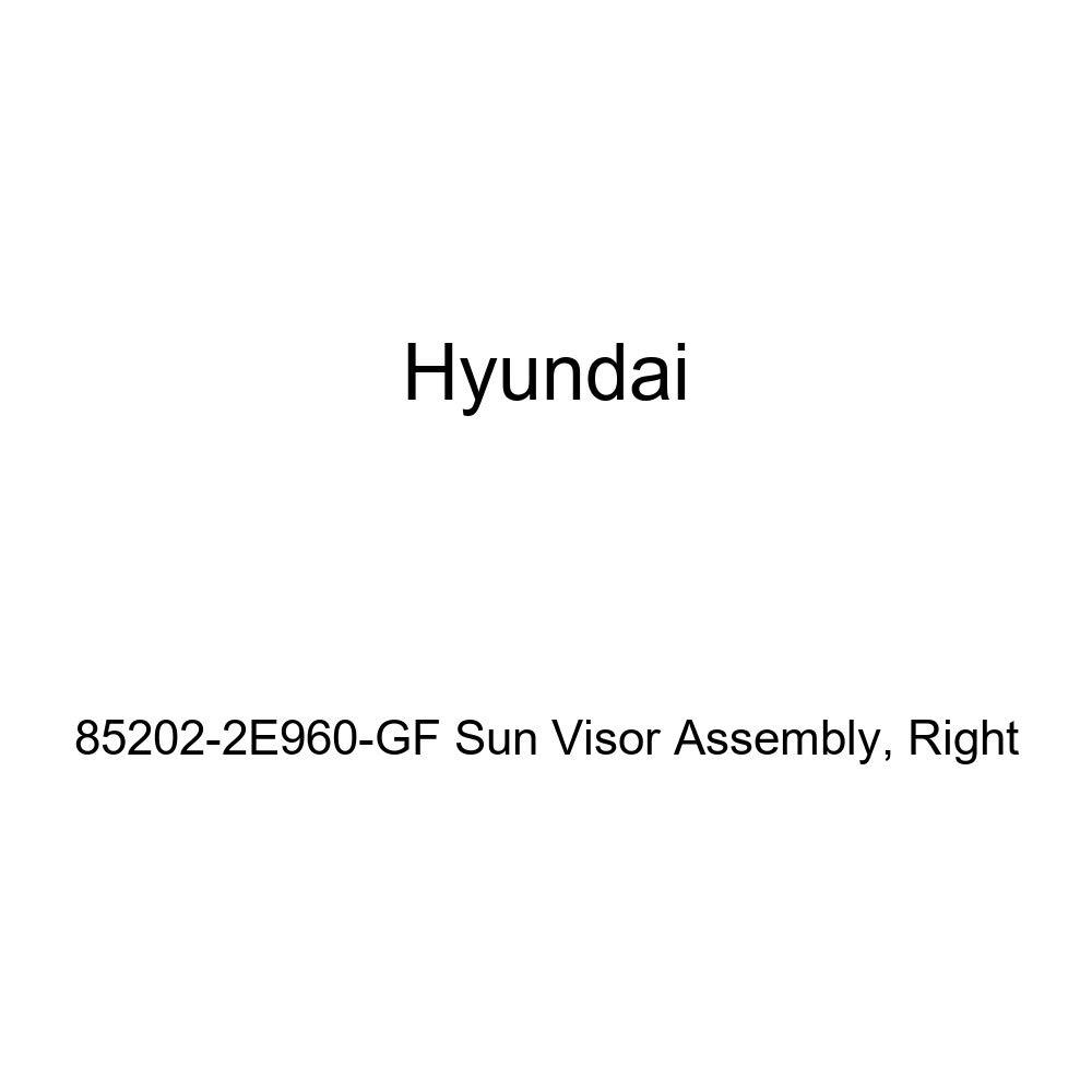 Genuine Hyundai 85202-2E960-GF Sun Visor Assembly Right