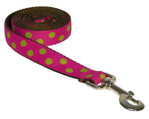 Sassy Dog Wear 6-Feet Fuchsia/Lime Dot Dog Leash, Medium