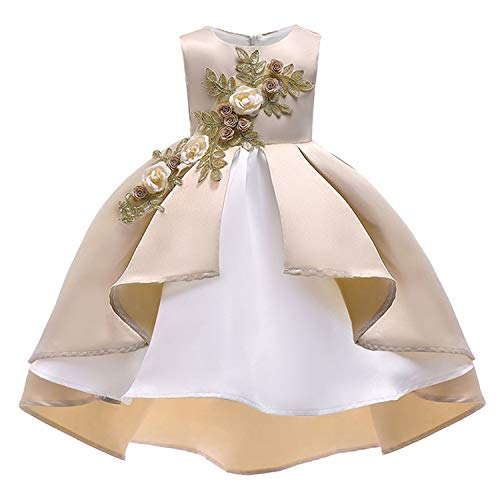 Girls Dress Summer Kids Dresses for Girl Princess Children Baby Tutu 2 3 4 5 6 7 8 9 10 Years,As Picture9,4T ()