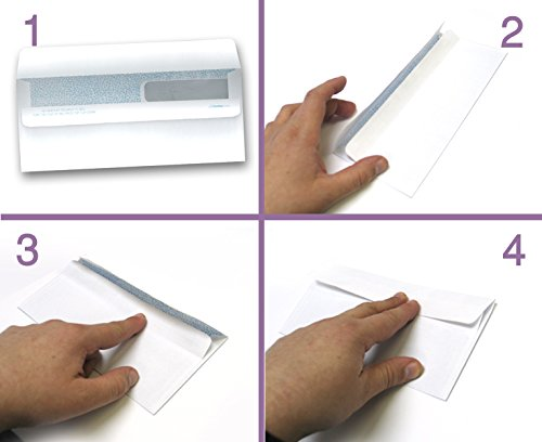 Ready-Seal Double Window Security Tinted Check Envelopes, Compatible for QuickBooks Checks ETC. (100 Per Pack)