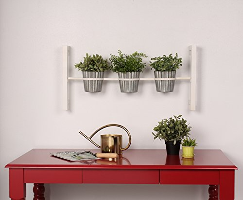 Groves Indoor Garden Hanging Planter product image