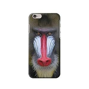 "Baboon Face Monkey inches iphone 5C Case,fashion design image custom iphone 5C inches case,durable iphone 5C hard 3D case cover for iphone 5C "", iphone 5C Full Wrap Case"