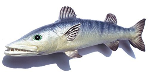 Baracuda , Game Fish, Thailand 3D High Quality Resin TOY Fridge Magnet