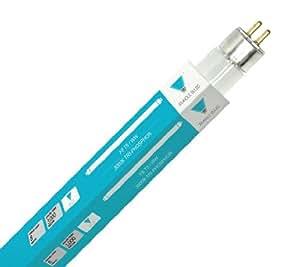 """Triangle Bulbs T30021-10 (10 pack) - F8T5/WW, 8 Watt, T5, 3000K Warm White, 12"""" Straight Fluorescent Tube Light Bulb, 10  Pack"""