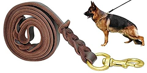 Fairwin Braided Leather Dog Training Leash 6 Foot - Best Dog Leather Leashes Heavy Duty for Large Small Dogs (3/4