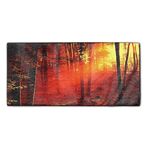 Forest Sunset Dusk Dish Towels, 11.8 ¡Á 27.5 Inches, Heavy Duty Kitchen Bar Towel for Drying & Cleaning