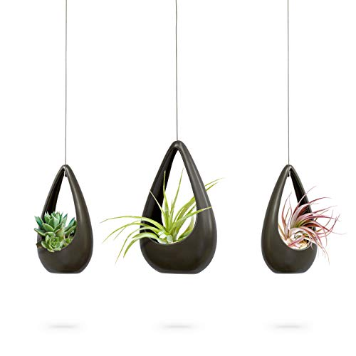23 Bees | Hanging Air Plant Holder | Gray Hanger Ceramic Planter | Small Floating Succulent Pots Container | Cactus Holders with Metal Wire | 3 ()