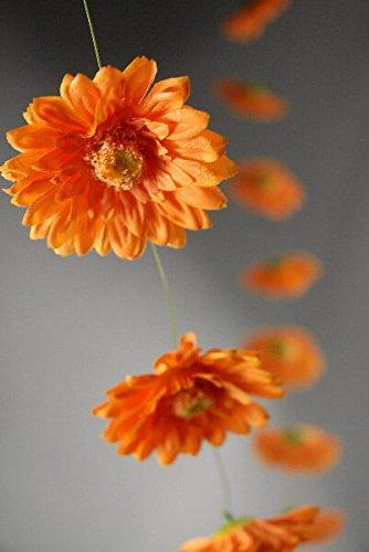 Daisy Gerbera Ornament - 8