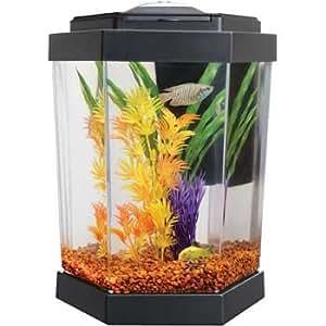 Petco Hex Freshwater Aquarium