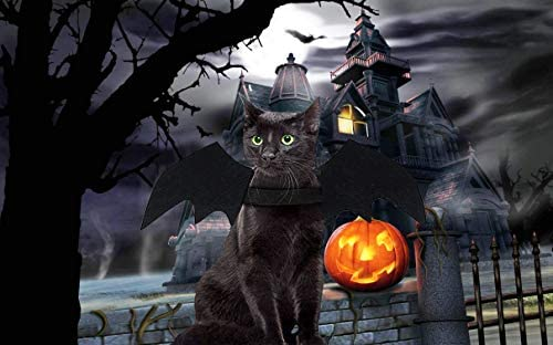 Malier Halloween Cat Costume for Cats Dogs Pet Bat Wings Cat Dog Bat Costume Wings (Small) 20