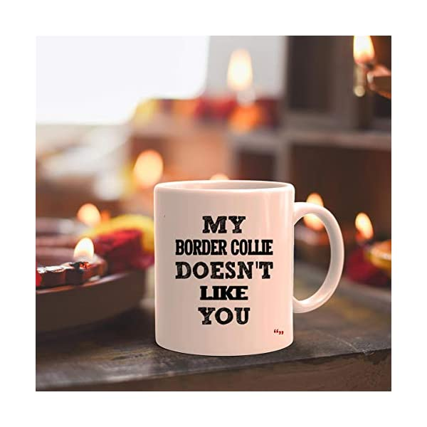 Sarcastic Mug - Funny Team Cup Coffee Mugs Border Collie Doesnt Like You Best | Thoughtful T-Shirt Gift 5