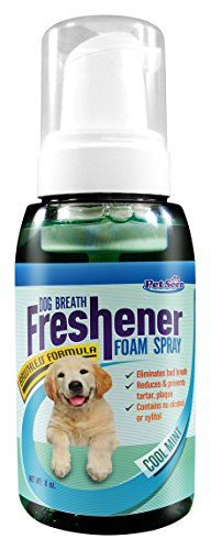 Petseer Dog Breath Freshener for Dogs & Cats, No Dog Toothpaste & Toothbrush Needed-No Alcohol/Xylitol Natural Cat Dog Teeth Cleaning Pet Product-Dog Mints Flavor - Helps Remove Plaque Tartar, 8 - Toothpaste Spray