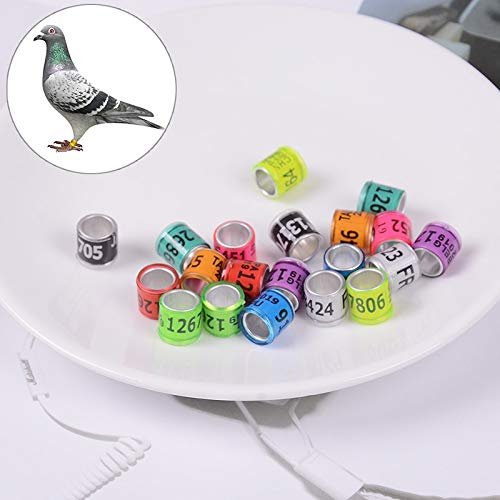 Pet Microchips - 2019 20pcs Pigeon Leg Rings Identify Dove Bands Plastic With Al Gb Training Aluminium - Microchips Bulk Kits Microchips Pigeon Bird Chicken Ring Roman Spqr Feeder Foot -