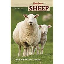 Sheep: Small Scale Sheep Keeping (Hobby Farm)