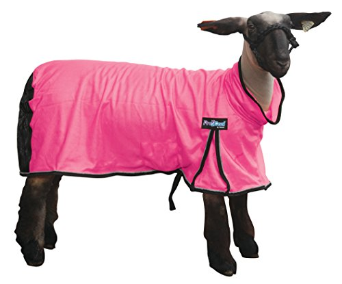 Weaver Leather Livestock ProCool Mesh Sheep Blanket with Reflective Piping (Weaver Snap)