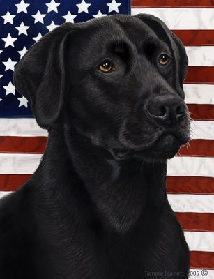 Black Labrador - Best of Breed Patriotic II Garden (Black Lab Flag)
