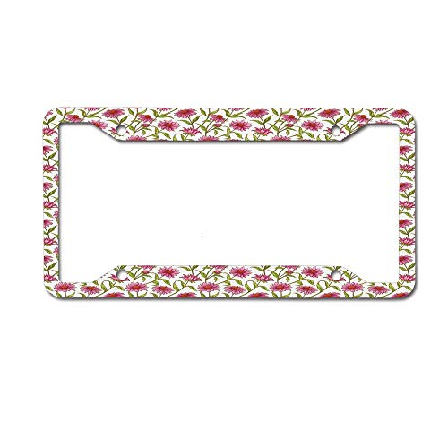 Dinzisalugg Custom Aluminum Metal License Plate Frame Tag Holder Cute,Fresh and Organic Echinacea Petals Floral Themed Image Healthy Wildflower Design License Plate Frame 4 Holes and -