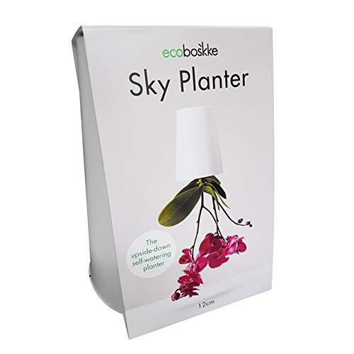 Sky Planter (Medium)