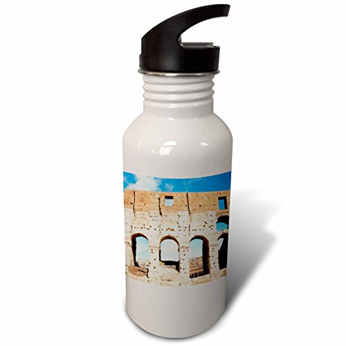 3dRose Danita Delimont - Ruins - Colosseum or Flavian Amphitheatre, Rome, Latium, Italy, Europe - Flip Straw 21oz Water Bottle (wb_277634_2) by 3dRose