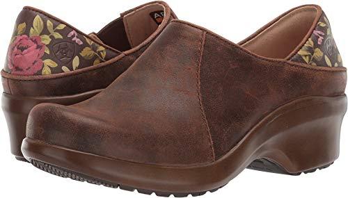 Ariat Women's Women's Hera Expert Clog, Antique Brown, 11 B US (Ariat Clogs Leather)