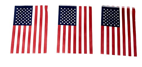100' Bulk Deluxe American Flag Pennant Banner - 100 U.S. Flags for 4th of July, Memorial Day and Veteran's Day