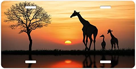 Ambesonne Africa License Plate Giraffes on Bushes by The Lake Surface Horizon in The Middle of Nowhere Image High Gloss Aluminum Novelty Plate 5.88 X 11.88 Orange Black