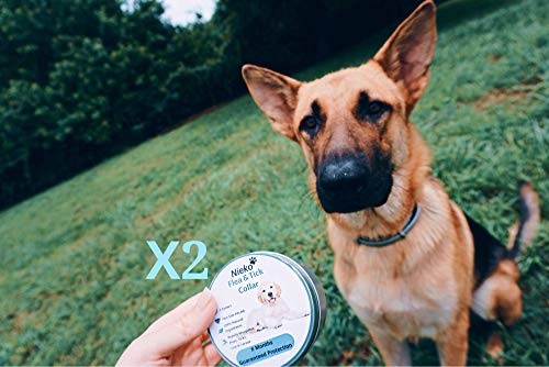 Flea and Tick prevention for Dogs- 2 Collars Organic Essential Oil Flea Collar for Dogs,Dog Flea and Tick Control for Hypoallergenic&Water Resistant
