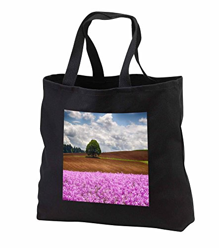 Price comparison product image Danita Delimont - Willamette - Oregon, Willamette Valley, pink Dames Rocket plants in full bloom 01 - Tote Bags - Black Tote Bag 14w x 14h x 3d (tb_251379_1)