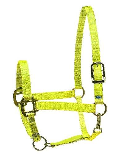Perri's Horse Nylon Super Halter, Yellow ()