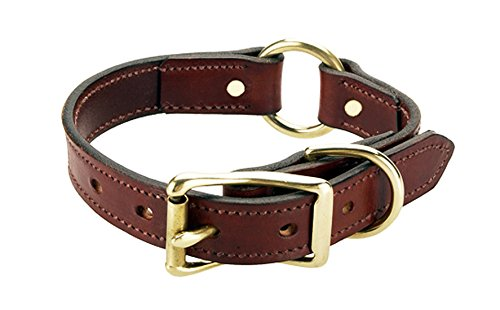 Mendota Pet Leather Hunt Dog Collar, Wide, Chestnut, 1 x 16-Inch ()
