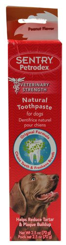 Petrodex Natural Toothpaste for Dogs Peanut -- 2.5 oz - 3PC