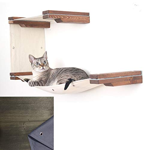 (CatastrophiCreations Cat Mod Double Decker Wall-Mounted Hammock Lounger Shelving for Cats - Onyx/Charcoal)