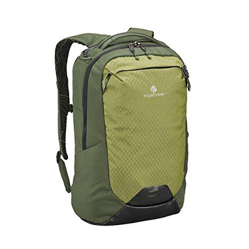 Eagle Creek Wayfinder 30L Backpack-multiuse-17in Laptop Hidden Tech Pocket Carry-On Luggage, Cypress/Highland -