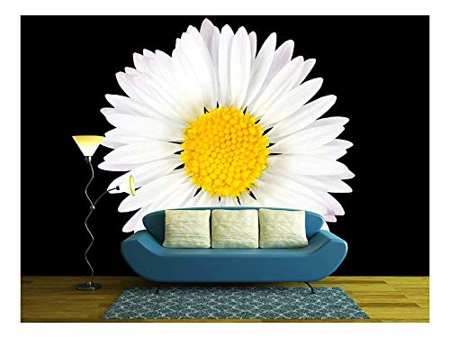 wall26 - Daisy Flower Isolated on Black Background - White with Yellow Center - Removable Wall Mural | Self-Adhesive Large Wallpaper - 66x96 ()
