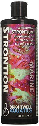 Brightwell Aquatics ABASTR500 Strontion Liquid Salt Water Conditioners for Aquarium, 17-Ounce ()