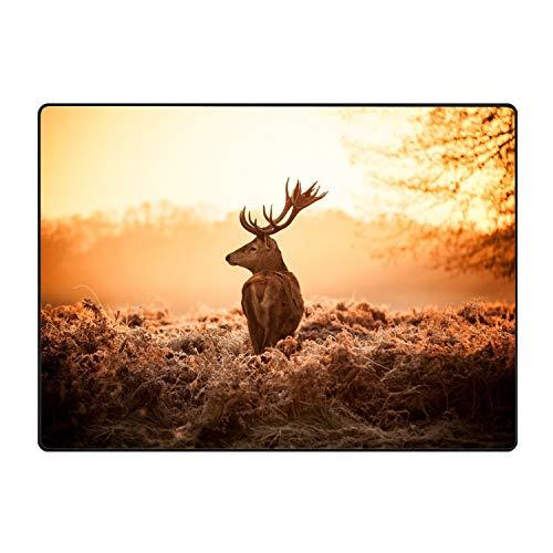 - Blair Louisa Personalized Funny Deer Walks to Light Mats Entrance Mat Floor Rug Indoor/Bathroom Mats
