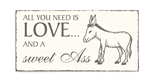 Amy020Carllyle Rustic Wooden Sign All You Need is Love and A Sweet Ass Cuter Donkey Vintage Keepsake Wooden Plaque/Sign Door Sign ()